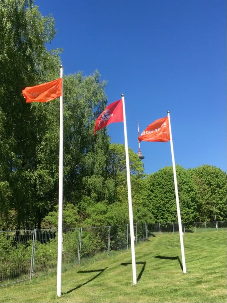 Флаг компании Согласие
